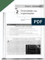 Texto 4 Parte 2 O Indivíduo Cap 2 Diversidade nas Orgs (ROBBINS, et al 2010)(1)