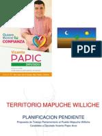 Propuesta Parlamentaria Candidato a Diputado Vicente Papic Arce PLANIFICACION MAPUCHE WILLICHE