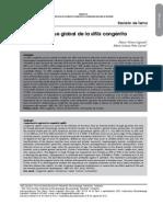 Dialnet-EnfoqueGlobalDeLaSifilisCongenita-3968726