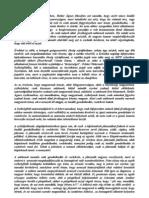 Székely autonómia - Eduardo Rózsa Flores és a konformizmus békjója