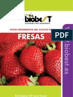 Crop Sheet Strawberry SP(1)