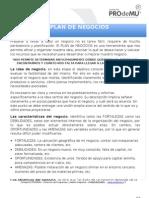 Formato Plan de Negocio Mmn 2013 Ts Blancas