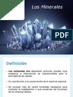 1. Minerales, Glucidos y Lipidos