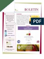 Boletin Año 5 No. 8