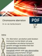 Chromosome Aberration