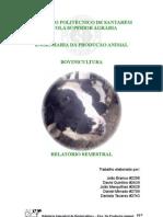 BOVINICULTURA - Relatório Semestral
