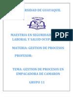 Gestion de Procesos-empacadora de Camaron (2)