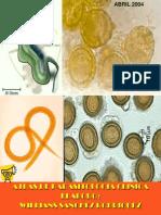 5339656 Atlas de Prasitologia