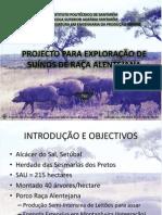 PROJECTOS AGRO-PECUÁRIOS - Apresentação (porco preto)