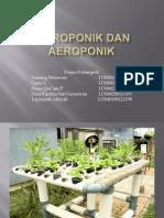 hidroponikdanaeroponik-121101045317-phpapp02