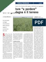 Cover Crops - Articolo