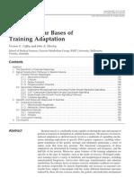Molecular Basis of Adaptation to Exercise Sports Med 2007 J Hawley