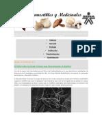 Hongos comestibles y medicinales UNIDAD 3.docx