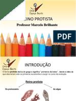 marcelobrilhante-reinoprotista-100312112455-phpapp02