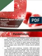 Anemia Dlm Kehamilan