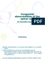 05 Congenital Abnormalities of the Spinal Cord