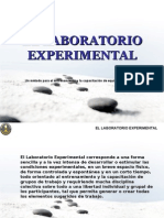 El Laboratorio Experimental 1215792725014918 9
