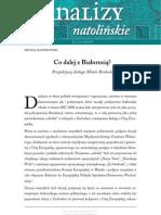 Natolin_Analiza_2_2009