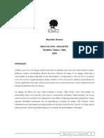 2009 Relatório Técnico Banco do Livro Araçuaí (FEV-ABR-09)