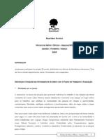 2009 Relatório Técnico Fabriquetas Araçuaí (JAN-MAR-09)