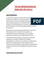 2011510268 580 2012d Mkt485 Proyecto de Exportacion de Mermelada de Uvilla (1)