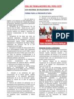 Plataforma Pncp PDF
