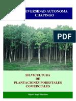 Silvicultura Plantaciones Forestales Comerciales 2006