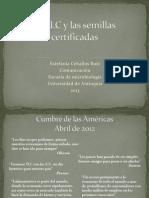 El TLC y Las Semillas Certificadas