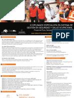 Diplomado Especialista en Seguridad y Salud Ocupacional