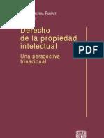Derecho de La Propiedad Intelectual - Manuel Becerra Ramirez