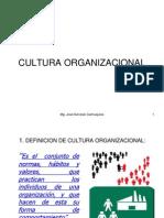 Cultura Organizacional of Control
