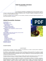 Ghidul-Drumetiilor-Montane din Romania.pdf
