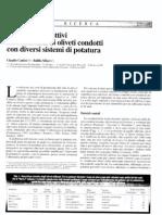 Risultati Economici e Produttivi in Uliveti condotti con diversi tipi di potatura.