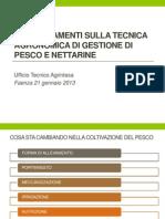TECNICA PESCO.pdf