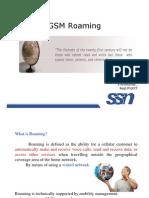 GSM Roaming