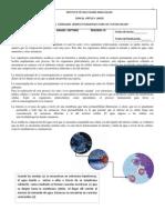 osmorregulacic3b3n.pdf