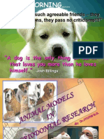 Animal Models Part 1