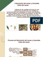 Proceso de fabricación del cacao y chocolate