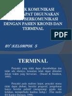 Kronis Dan Terminal