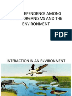 Interdependence Among Living Organisms and the Environment