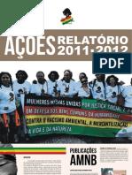 Relatorio AMB 2013