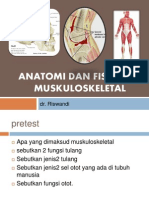 Anatomi Dan Fisiologi Sistem Muskuloskeletal