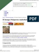 Hongo Polyporus Umbella