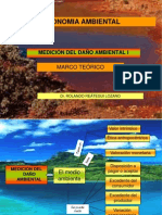 Medición del daño ambiental 1