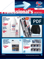 SEPTEMBER 2013 Professional Flyer