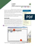 Excel 2003 Advanced Calculations