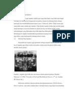 Definisi, Etiologi Dan Klasifikasi Gigi Impaksi