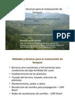 restauracion de bosques.pdf