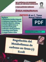 Metabolismo Del Carbono en e.coli