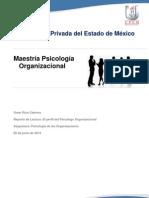Perfil de Psicologo Organizacional